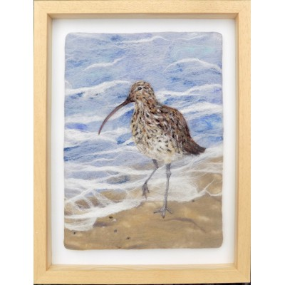 Curlew at the Water's Edge
