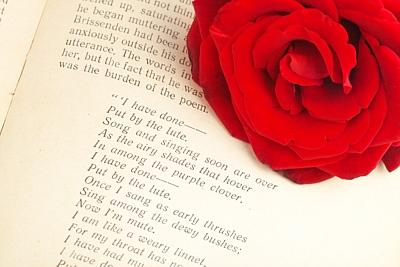 Authors & Poets
