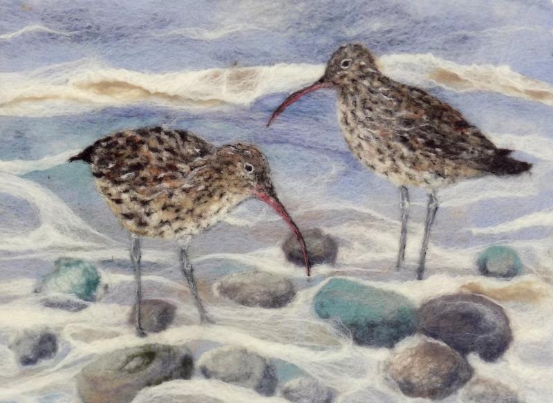Curlews & Pebbles
