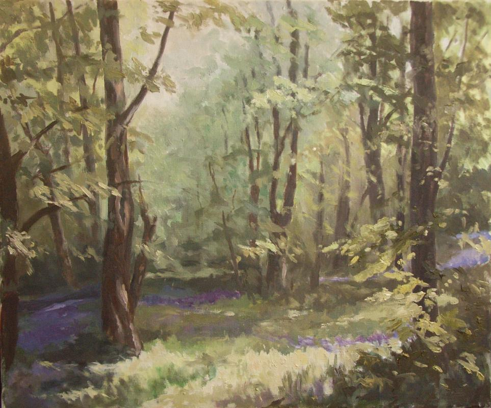 BLUEBELLS, PENGLAIS WOODS, Oil on canvas,  55 x 65 cm