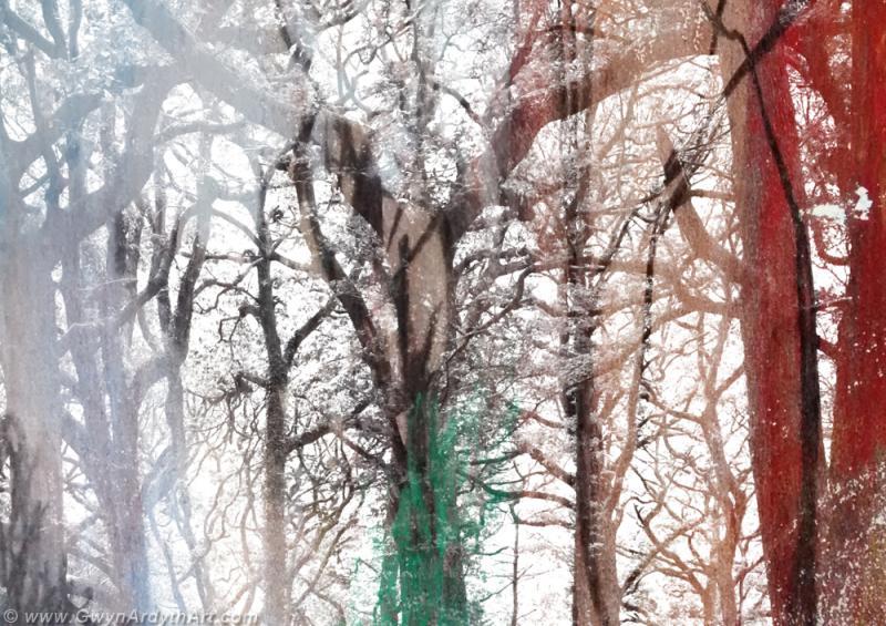 Holford Combe Dryad, digital montage