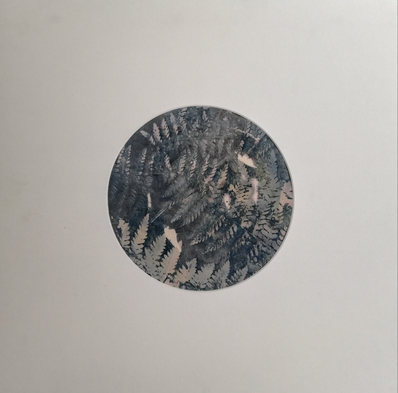 Hidden - Toned Cyanotype